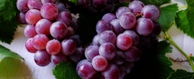 Red grapes, blueberries, raspberries and peanuts benefit infertile women with endometriosis