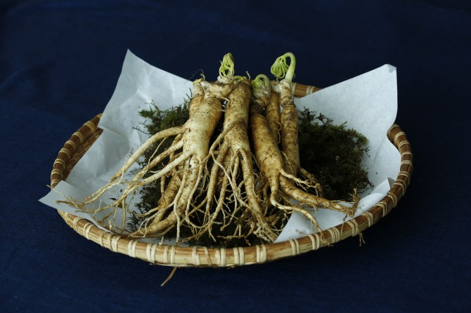 Therapeutic potential of ginseng component for endometriosis